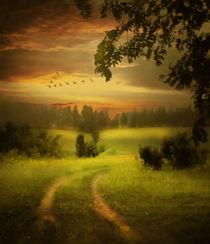 Fields Of Dreams by Zeana Romanovna