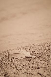 Beach of stillness by Lars Hallstrom
