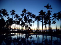 Sunset Palms, Rep. Dominicana by Tricia Rabanal
