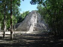 Mayan Pyramid,Coba, Mexico by Tricia Rabanal