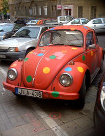 An Old but Healthy Ladybird by factory-3