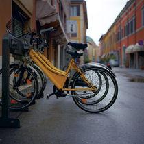 yellow bikes  by Vsevolod  Vlasenko