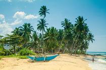 Blauer Katamaran an einem Strand mit Kokospalmen von Gina Koch
