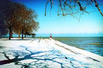 The-art-of-winter-srgb