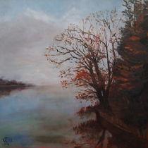 Herbstnebel by Ellen Fasthuber-Huemer