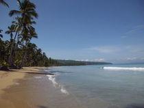 Caribbean Beach von Tricia Rabanal
