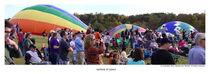 Rainbow of colors by Sandra Lee Hartsell Sumner