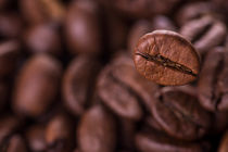 einzelne Kaffeebohne von Denis Kramer