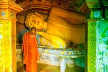 Buddhismus leben von Gina Koch