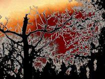 Mystisches Schattenspiel by Heidrun Carola Herrmann