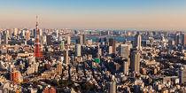 Tokyo 11 by Tom Uhlenberg