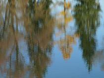 Herbstlicher Wasserspiegel von Brigitte Deus-Neumann