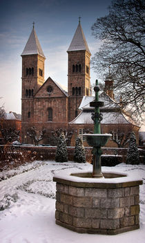 Viborg Cathedral by Paul Davis