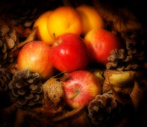Apples and Oranges by Paul Davis