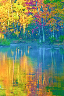 Reflections of Autumn Four von Jamie Starling