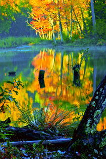 Reflections of Autumn Seventeen von Jamie Starling
