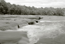Rapids Along the Cape Fear by Jamie Starling