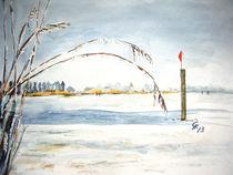 Winter bei der Reichenau by Christine  Hamm