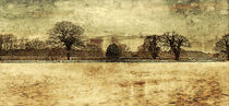 North Norfolk Scenery. by rosanna zavanaiu