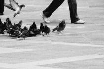 walk venice by Manuela Russo