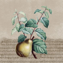Vintage Pear Music by Patricia N