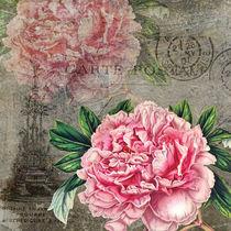 Peony Vintage Floral by Patricia N
