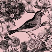 Botanical Bird by Patricia N