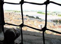 Bordeaux - eine Stadt unter meiner Nase by Olga Sander