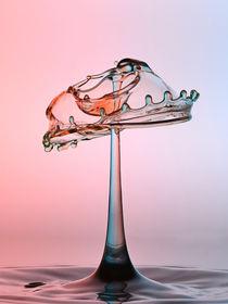 Wasser Pilz von Sven Wiemers