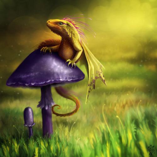 Fairy-dragon