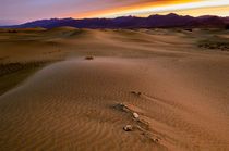 Death Valley Sunrise von Barbara Magnuson & Larry Kimball