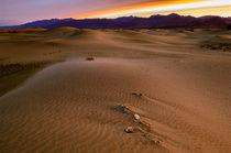 Scca-0251-death-valley-sand-dunes