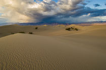 Death Valley Dunes von Barbara Magnuson & Larry Kimball