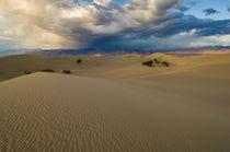 Scca-0042-sand-dunes