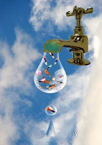 Drop in the ocean by Ed Lukas