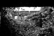 Building ruins  von Joseph Amaral