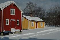 Peace in Snow von Jenny Pfau