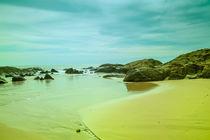 Wunderschöne Küstenlandschaft von Gina Koch