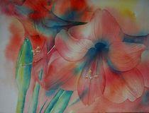 Amaryllisblüte von Thomas Habermann