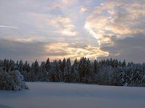 Winterlandschaft by aidao
