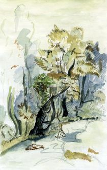 Bäume am Bach by claudiag