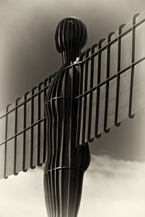Angel of the North by David Pringle