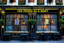 Pissed as a Newt Pub  von David Pyatt