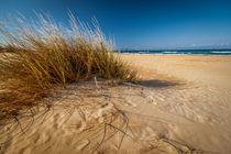 Strandszene by gfischer