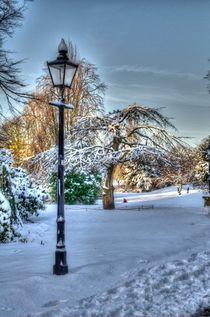 Museum Gardens York von Allan Briggs