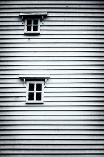 Two Windows by Vinicios de Moura