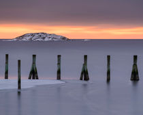 Wooden pilings  by Mikael Svensson
