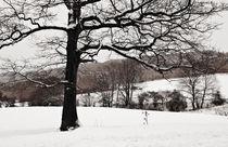 Schneelandschaft  von Barbara  Schreiber