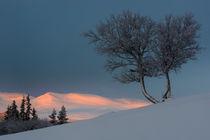 Sunrise  von Mikael Svensson