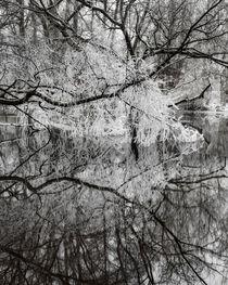 'River reflection' von Mikael Svensson
